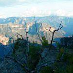 BATOPILAS, a rodar hacia la inmensidad de la Sierra Madre Occidental.
