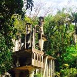 Viaje surrealista a Xilitla