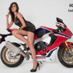 Brasil se impone en las pasarelas de Moto Fashion