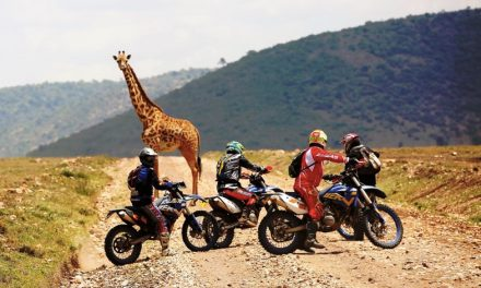 Rodando bajo el sol de África