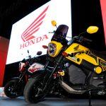 La marca del ala dorada se luce con la presentación del nuevo modelo Navi