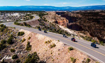¿Nueva imagen en modelos de Harley-Davidson eléctricos?