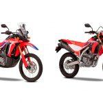 Nuevas Honda CRF300L y CRF300 Rally 2021